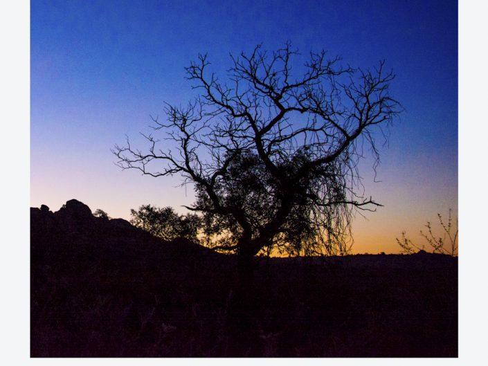 Fotografia paisaje naturaleza polaroid