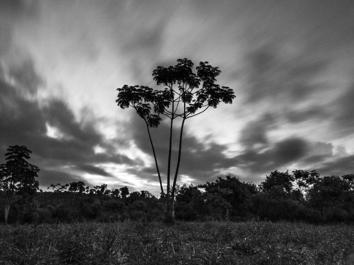 Fotografia paisaje naturaleza